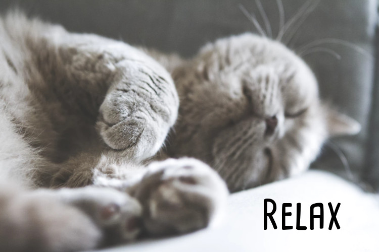 Just Relax…..